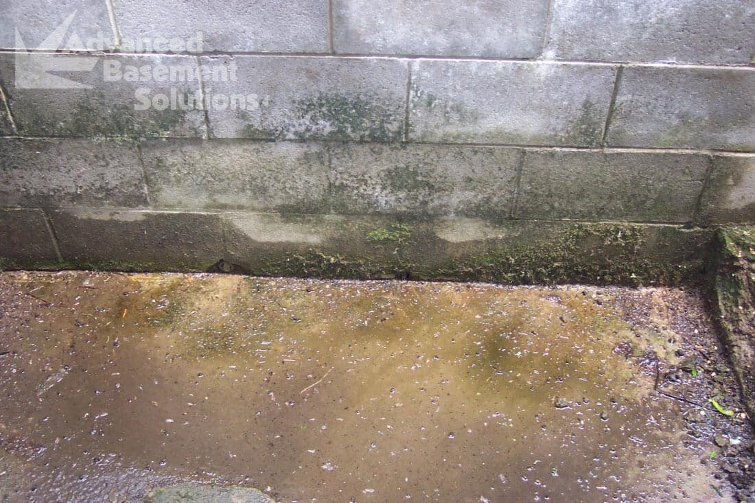 Before-French-Drain-small